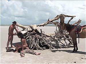 wild brazilian dame gets 2 weenies on the beach
